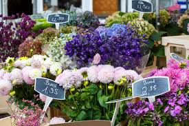 flowers for sale flowers for sale at a german flower market stock image image of