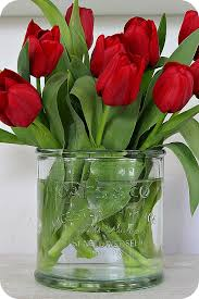Flower Love Pics - best 25 red tulips ideas on pinterest red flowers purple