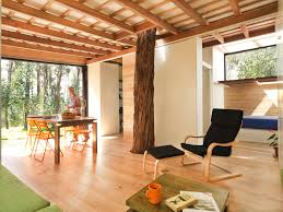 a tiny eco friendly house in ecuador for a retired couple