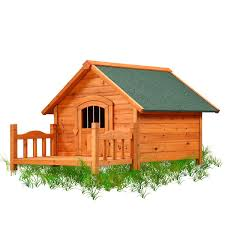 House Dogs by Amazon Com Pet Squeak Porch Pups Dog House Large Pet Supplies
