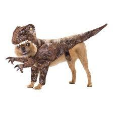 brown costume raptor pet dog costume brown target