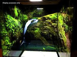exo terra backgrounds crestie jungle