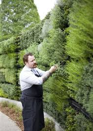 60 best living walls images on pinterest gardening landscaping