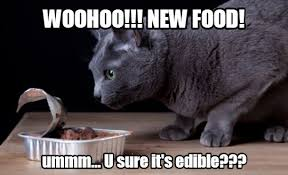 Woohoo Meme - how to switch cat food properly