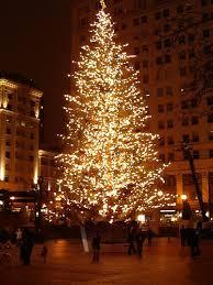 Portland Christmas Lights Holiday Events 2012 Portland Tree Lighting Ceremony