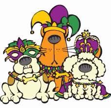 mardi gras jester ribbon dog mardi gras dogs mardi gras mardi gras
