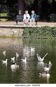 Bench Ladies People Sitting Chatting Talking On Bench Ladies Britain Stock