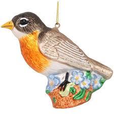 34 best robin birds images on robin