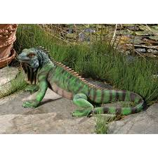 Toscano Home Decor Amazon Com Design Toscano Giant Iggy The Iguana Reptile Statue