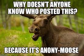 Moose Meme - bad pun moose latest memes imgflip