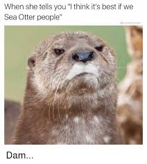 Sea Otter Meme - when she tells you l think it s best ifwe sea otter people