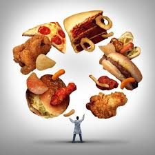high fat junk food diet impairs adolescent brain growth