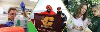 Environmental Scientists And Specialists Bureau Environmental Science Central Michigan