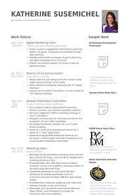 digital marketing resume digital marketing intern resume sles visualcv shalomhouse us