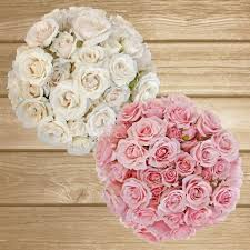 where to buy peonies spray roses 40cm pack 120 stems