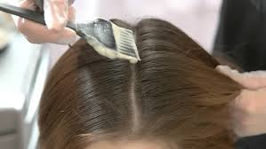 Wash Hair Before Color - female hairdresser hold in hand between fingers lock of hair comb