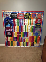 sports ribbon display board for all of those swim ribbons
