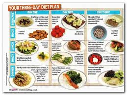 700 best balanced diet plan images on pinterest balanced diet