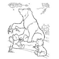 10 free printable polar bear coloring pages