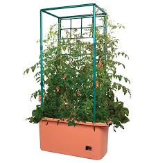 amazon com hydrofarm 10 gallon self watering tomato trellis