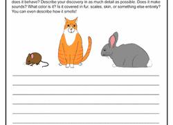 creative writing worksheets education com