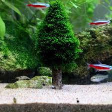 christmas moss tree plant simulation grow aquarium fish shrimp