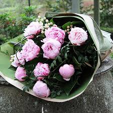 peony bouquet peonies sydney delivery pink peony flowers for everyone