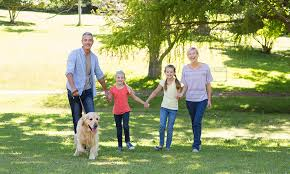 Dog Friendly Cottages Lake District by Pet Friendly Cartmel Holiday Cottages In The Lake District