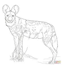 african wild dog coloring page free printable coloring pages