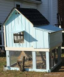 Can I Have Chickens In My Backyard by Natural Chicken Keeping How Much Coop And Run Space Do I Need
