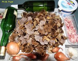 cuisiner les chanterelles grises chignons toute l ée des chanterelles à cuisiner myco33