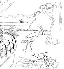 printable zoo animal coloring pages 66 best zoo fun images on pinterest zoos felt boards and zoo