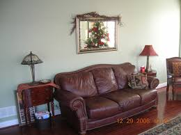 softened green wall by sw with dark reddish brown floors and