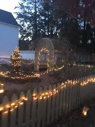 Stone Zoo Christmas Lights by Pink Lady Stone Zoo Christmas Lights And Portsmouth Candelight