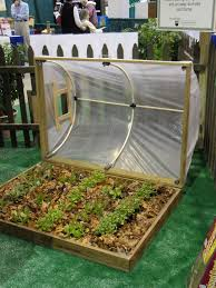 Backyard Green House by Best 25 Pvc Greenhouse Ideas Only On Pinterest Pvc Connectors