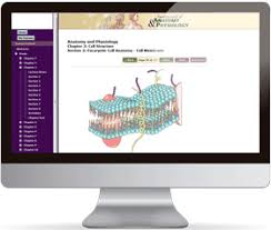 College Anatomy And Physiology Notes Anatomy Courses Online At Best Way To Study Anatomy And Physiology