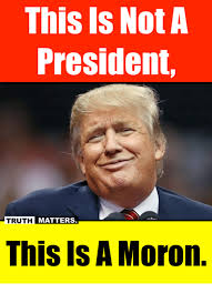 Moron Meme - this is not a president truth matters this is a moron meme on