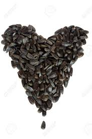 heart of black sunflower seeds on a white background stock photo