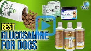Joint Comfort Dietary Supplement Top 9 Glucosamine For Dogs Of 2017 Review
