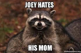 Evil Raccoon Meme - joey hates his mom evil plotting raccoon make a meme