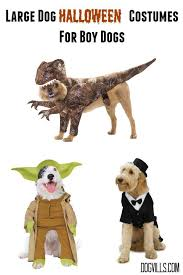 Halloween Costume Large Dogs Large Dog Halloween Costumes Handsome Fella Dogvills