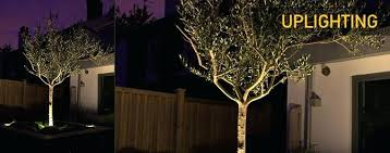 low voltage led landscape lighting kits low voltage garden lighting kits led landscape lights low voltage