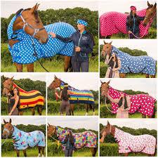 Weatherbeeta Combo Stable Rug Weatherbeeta Horse Rugs Ebay