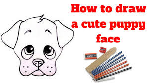 how to draw a cute puppy face draw sketch youtube