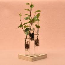 Test Tube Flower Vases Online Get Cheap Test Tube Vase Aliexpress Com Alibaba Group
