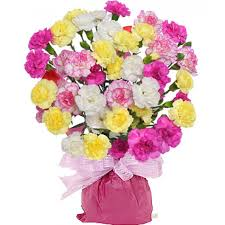 affordable flower delivery affordable flower delivery in northbay boulevard south navotas