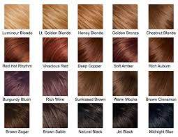 hair color chart hair color chart by lemontrash on deviantart