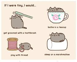 Pusheen Cat Meme - i am pusheen the cat book by claire belton official publisher
