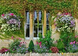 Pretty Garden Ideas 102 Best Pretty Garden Pictures Images On Pinterest Garden
