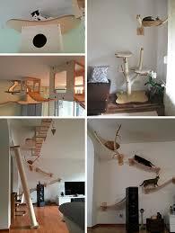 cat wall furniture 3d cat furniture set modular hangouts for walls ceilings urbanist